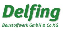 delfing_logo