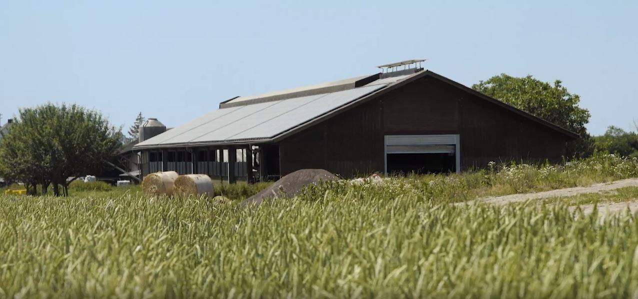 wi-solar-landwirtschaft-showreel-6